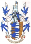 Arms granted to Brian Arundel