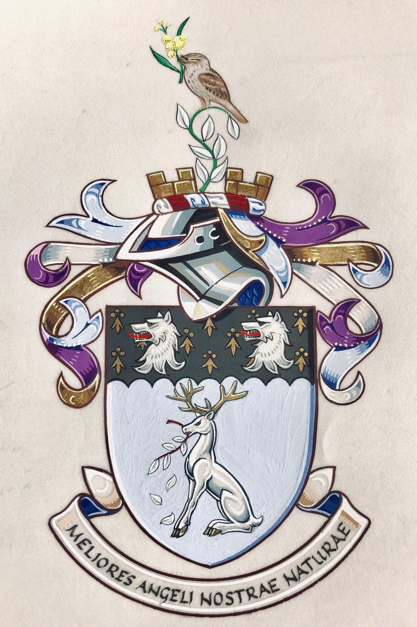 Potter D arms4